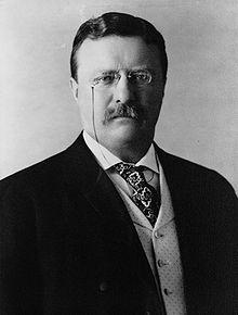 220px-President_Theodore_Roosevelt,_1904[1]