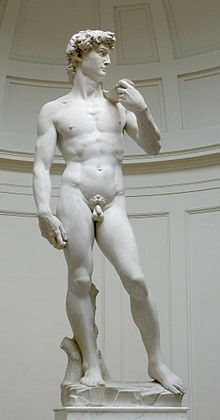 220px-David_von_Michelangelo[1]